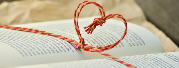 novel writing (1)